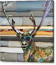 Cool Caribou Acrylic Print by Danny Phillips