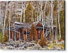 Cool Colorado Rural Rustic Rundown Rocky Mountain Cabin  Acrylic Print by James BO  Insogna