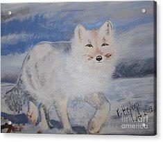 Cool Fox Acrylic Print by Francine Heykoop