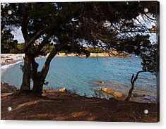 Acrylic Print featuring the photograph Cool Shade by Paul Indigo