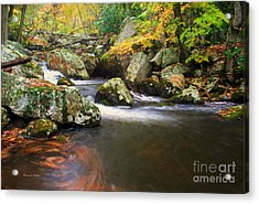 Cool Waters Of Autumn Acrylic Print by Darren Fisher