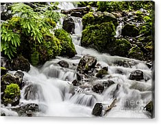 Acrylic Print featuring the photograph Cool Waters by Suzanne Luft