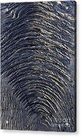 Cooled Pahoehoe Lava Wrinkles Acrylic Print by Sami Sarkis