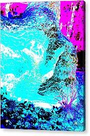 Coos Canyon 227 Acrylic Print by George Ramos