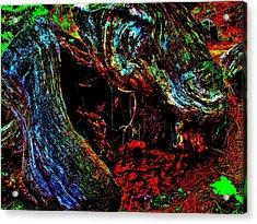 Coos Canyon 229 Acrylic Print by George Ramos