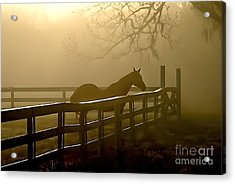 Coosaw Early Morning Mist Acrylic Print