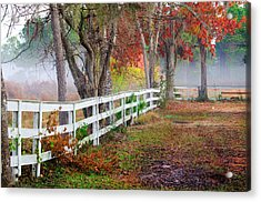 Coosaw Horse Fence Acrylic Print by Scott Hansen