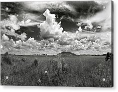 Copeland Prairie Revisited Acrylic Print