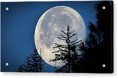 Acrylic Print featuring the photograph Copernicus View by Julia Hassett