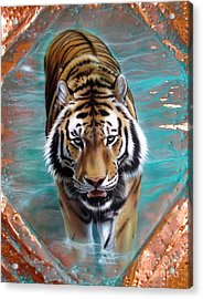Copper Tiger 3 Acrylic Print by Sandi Baker