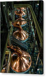 Copper Tops Acrylic Print