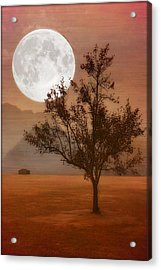Copper Tree Acrylic Print by Tom York Images