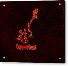 Copperhead Acrylic Print by Rosemarie E Seppala