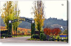 Coppola Winery Sold Acrylic Print