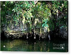 Coral Bluffs Acrylic Print by Janis Lee Colon