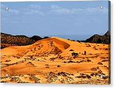 Coral Pink Sand Dunes Utah Acrylic Print by Christine Till