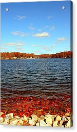 Cordry Lake In The Fall Acrylic Print by Abril Gonzalez
