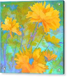 Coreopsis - Yellow And Green Acrylic Print