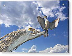 Cormorant Close Encounter With Tree Squirrel 1 Acrylic Print by Roy Williams