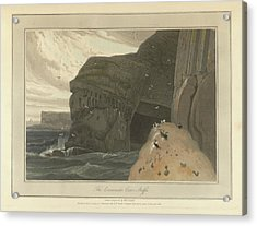 Cormorants Cave On The Cliffs Of Staffa Acrylic Print by British Library