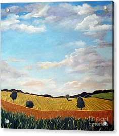 Corn And Wheat - Landscape Acrylic Print