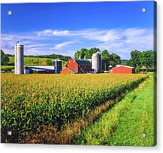Corn Crop And Iowa Farm At Harvest Time Acrylic Print by Ron thomas