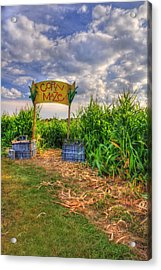 Corn Maze Acrylic Print by Joann Vitali