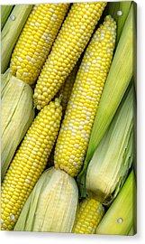 Corn On The Cob II Acrylic Print by Tom Mc Nemar