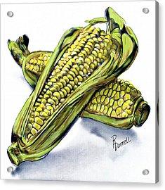 Corn Study Acrylic Print
