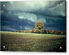 Cornfield On Argentine Road Acrylic Print by James Welch