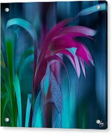 Acrylic Print featuring the photograph Cornflower Dreams Mindscape by Wayne King