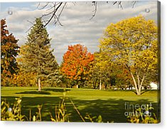 Corning Fall Foliage 5 Acrylic Print
