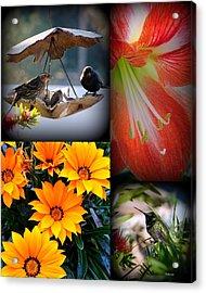 Cornucopia Garden Acrylic Print