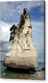 Coromandel Rock Acrylic Print