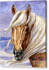 Corona Band Stallion Of Sand Wash Basin Hma Acrylic Print