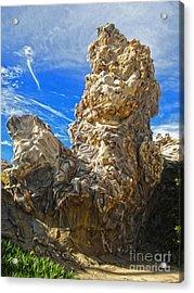 Corona Del Mar State Beach - 03 Acrylic Print by Gregory Dyer