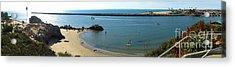 Corona Del Mar State Beach Acrylic Print by Gregory Dyer