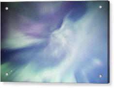 Coronal Aurora Acrylic Print
