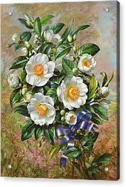 Coronation Camelia From The Golden Jubilee Series Acrylic Print