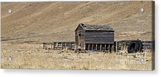 Corral Acrylic Print by Dee Cresswell