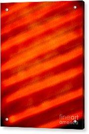 Corrugated Orange Acrylic Print