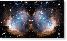 Cosmic Butterfly Acrylic Print by Jennifer Rondinelli Reilly - Fine Art Photography