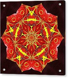 Cosmic Masculine Firestar Acrylic Print by Derek Gedney