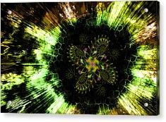 Cosmic Solar Flower Fern Flare Acrylic Print