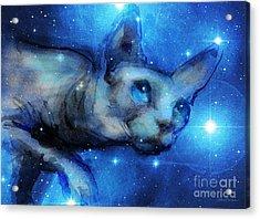 Cosmic Sphynx Cat  Acrylic Print