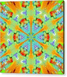 Cosmic Spiral Kaleidoscope 41 Acrylic Print by Derek Gedney