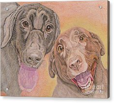 Cosmo And Lucy Acrylic Print by Audrey Van Tassell