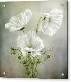 Cosmos Charm Acrylic Print