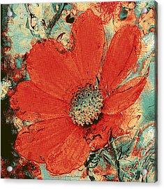 Cosmos Flower Acrylic Print