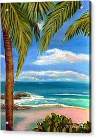 Costa Rica Rocks   Costa Rica Seascape  Acrylic Print